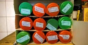 DIY com caixas de cereais cortadas para arquivar verticalmente os vidros de tempero. Falta aquele toque profissional nas etiquetas.